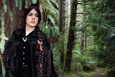 redwoods-featured